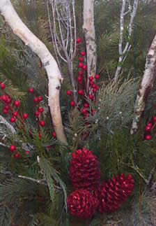christmas urns, christmas greens, christmas containers, fresh greens, birch, pinecones, jensen nursery and garden center