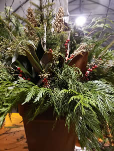 CUSTOM OUTDOOR NATURAL STYLE CONTAINERS, NATURAL OUTDOOR DECOR, MAGNOLIA LEAVES, CHRISTMAS CONTAINERS, WINNIPEG CHRISTMAS SHOP, JENSEN NURSERY,CHRISTMAS